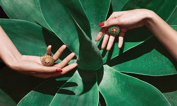 Cactus Cartier